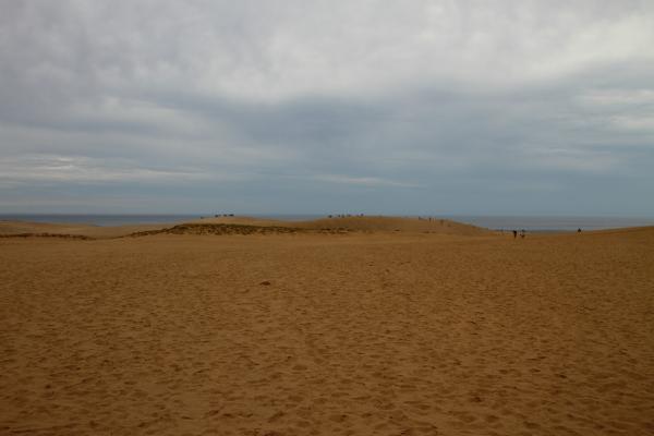 広大な鳥取砂丘