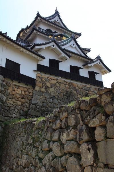 彦根城を見上げる