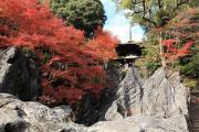 多宝塔と硅灰石と紅葉