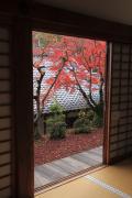 和室から紅葉を望む