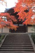 下から見た光明寺勅使門