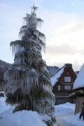 白川郷の樹氷
