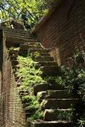 ラピュタを思わせる友ヶ島の苔むした階段