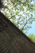 友ヶ島・レンガと生い茂る木々