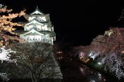 夜桜と弘前城
