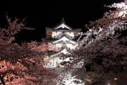 弘前城と夜桜の競演