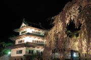 弘前城本丸と夜桜