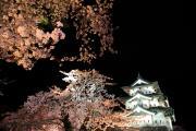夜の弘前城天守閣