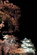 青森の夜空を彩る桜と弘前城天守