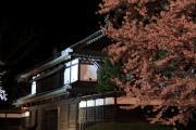 夜桜と弘前城城門