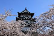 日本さくら名所100選、弘前城天守閣