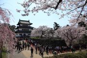春、弘前城に並ぶ多くの人