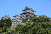 青々とした木々と姫路城