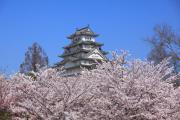 花霞の姫路城