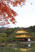 金閣寺を彩る紅葉
