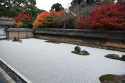 紅葉の竜安寺石庭